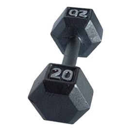 York 20 lb. Hexagonal Dumbbell