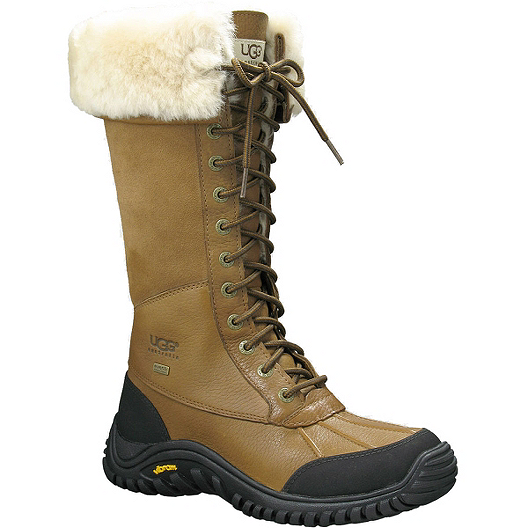 d91bb4fd Ugg Women's Adirondack Tall Winter Fashion Boots - Otter | Sport Chek