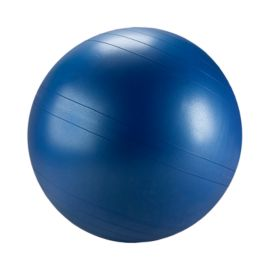 Fitter Classic Exercise Ball Chair - 65 cm
