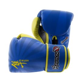 Hayabusa Ikusa Series 16 oz. Gloves - Electric Blue