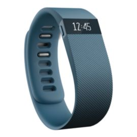 Fitbit Charge Fitness Tracker - Slate Large