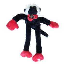 Ottawa Senators Slider Monkey