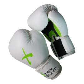 TenCount 12oz. Training Gloves