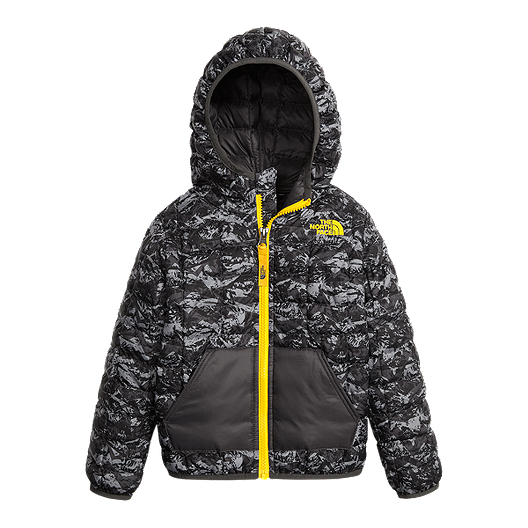 5350624e1 The North Face Toddler Boys' Thermoball Winter Jacket | Sport Chek