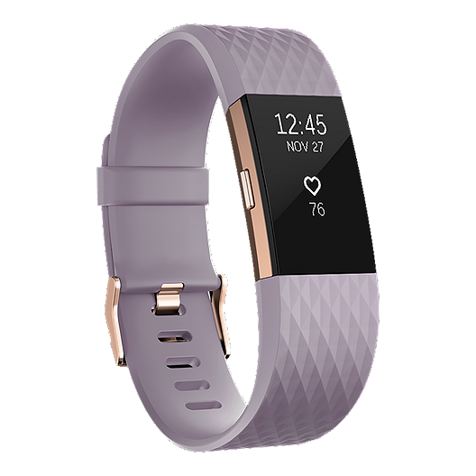 Fitbit Charge 2 Fitness Tracker - Lavender/Rose Gold Small | Sport Chek