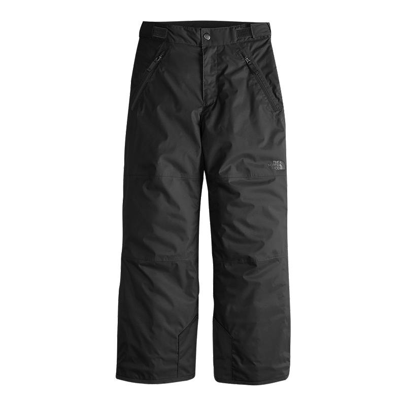 0fb5a1b24 The North Face Boys' Freedom Insulated Winter Pants
