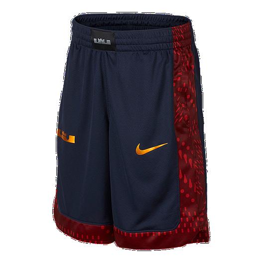 timeless design b45c1 ef73d Nike Boys  LeBron James GFX Basketball Shorts   Sport Chek