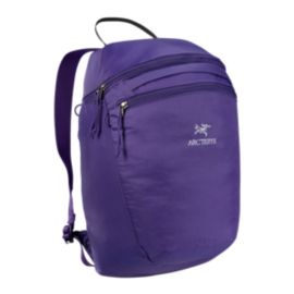 Arc'teryx Index 15L Tech Day Pack - Azlea