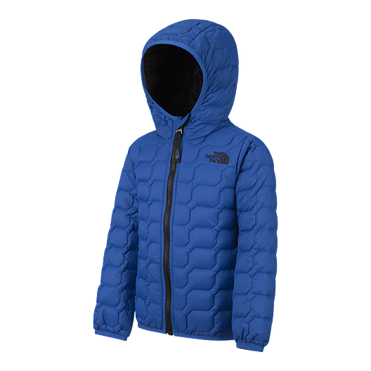bc42c9029 The North Face Toddler Boys' Thermoball Jacket
