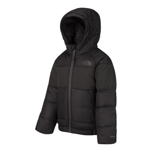 406795411 The North Face Toddler Boys' MoonDoggy 2.0 Down Winter Jacket ...