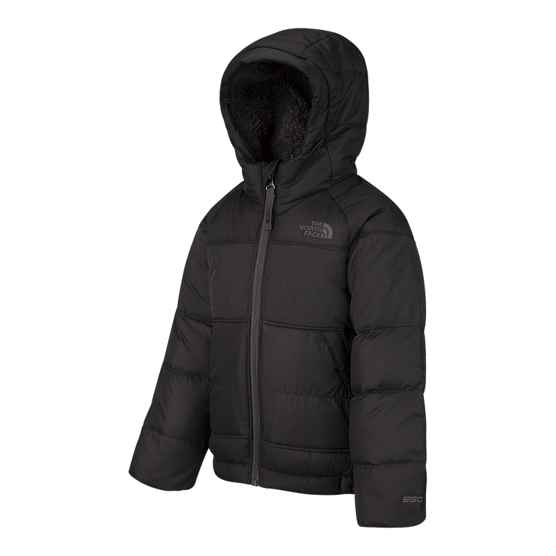 e62980363 The North Face Toddler Boys  MoonDoggy 2.0 Down Winter Jacket ...