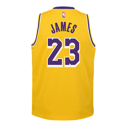 check out b7f63 22972 Youth Los Angeles Lakers LeBron James Icon Yellow Jersey