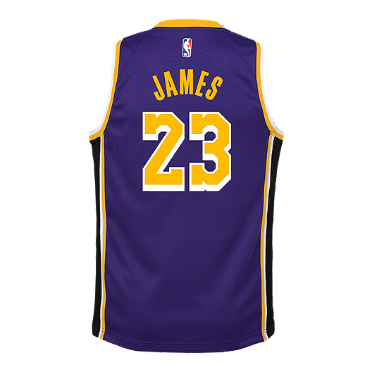 fb464c89e Youth Los Angeles Lakers LeBron James Statement Purple Jersey ...