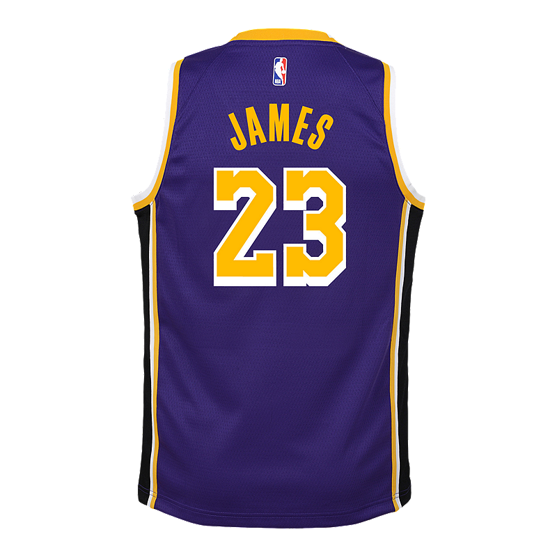 low priced 2a491 4bb75 Youth Los Angeles Lakers LeBron James Statement Purple Jersey