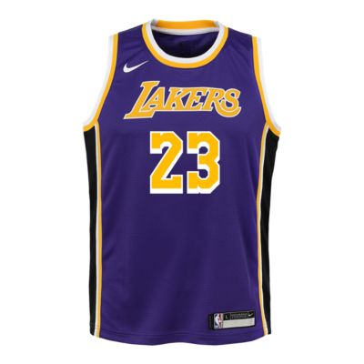 lebron james lakers jersey purple Off 50% - www.bashhguidelines.org