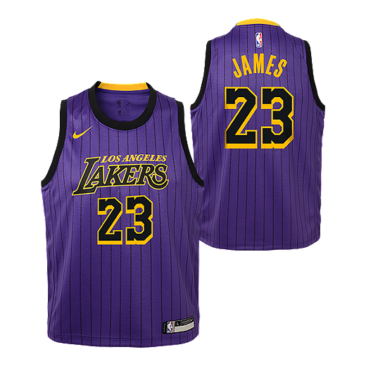 579e6bd258a Youth Los Angeles Lakers James City Edition Replica Purple Jersey - PURPLE