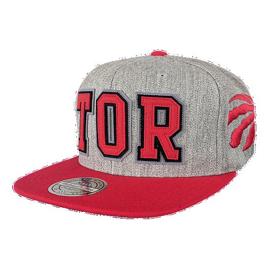 0932c0365154 Toronto Raptors Mitchell and Ness Retaggio 110 Flex Snapback Cap ...