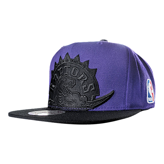 competitive price 5790f 0ebe3 Toronto Raptors Mitchell and Ness Hardwood Classics Crop XL Logo 2T Snapback  Cap   Sport Chek