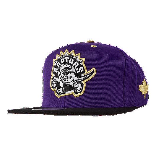 63e07add833 Toronto Raptors Mitchell and Ness Hardwood Classics Tip Snapback Cap ...