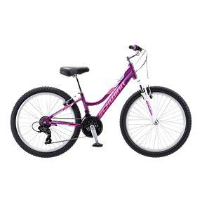 c1d1dfb6443 Schwinn Breaker 24 Junior Girl's Mountain Bike 2019 - Purple