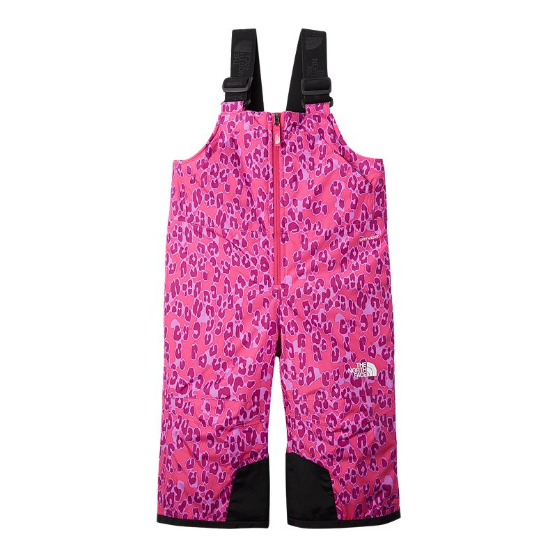 Image of The North Face Girls' Snowquest Insulated Bib Pants
