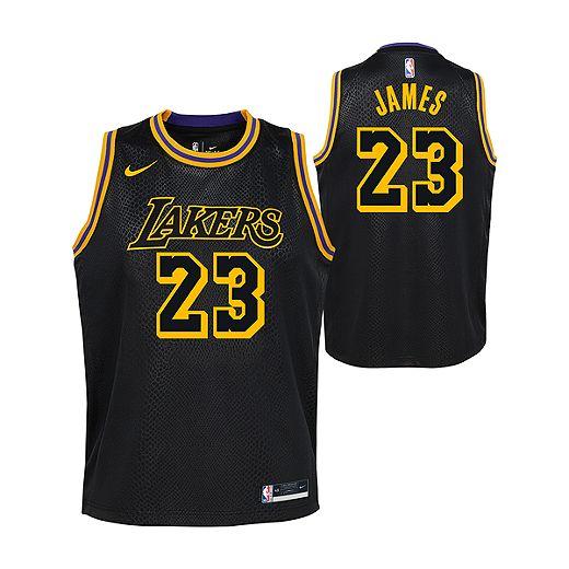 Youth Los Angeles Lakers Nike LeBron James City Edition Mamba Jersey