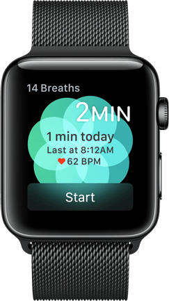 Apple Watch Breathe App Product Image