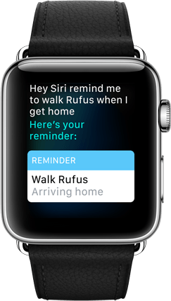 Apple Watch Ask More of Siri Product Image